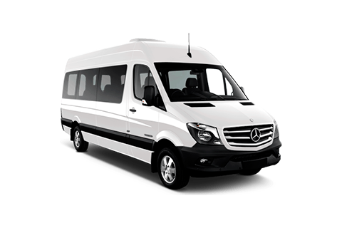 Cabo Transportation in Mercedes Benz Sprinter